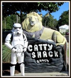 13-CattyShack10-11-2014 014